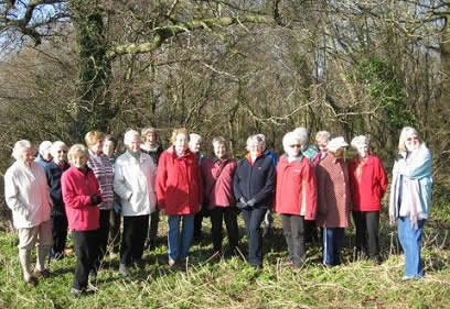 Photo of lots of Winscombe strollers visiting the snowdrops Feb 08