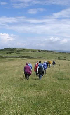 Photo of walkers on uphill meadows